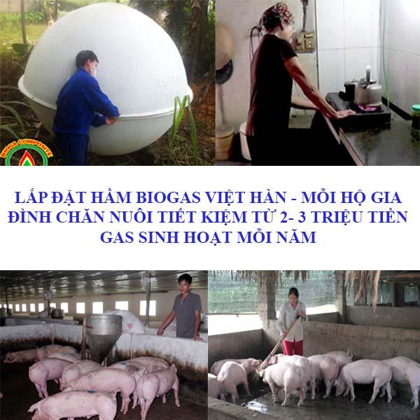 cách làm chuồng lợn nái