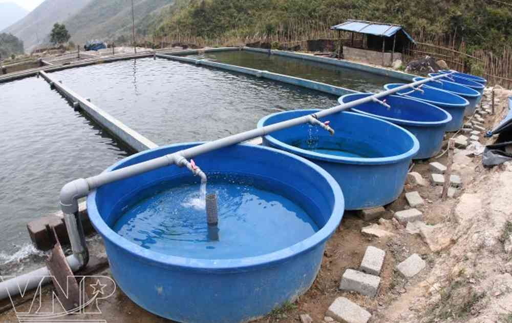 bể nuôi cá - bể nuôi thủy sản composite Việt Hàn
