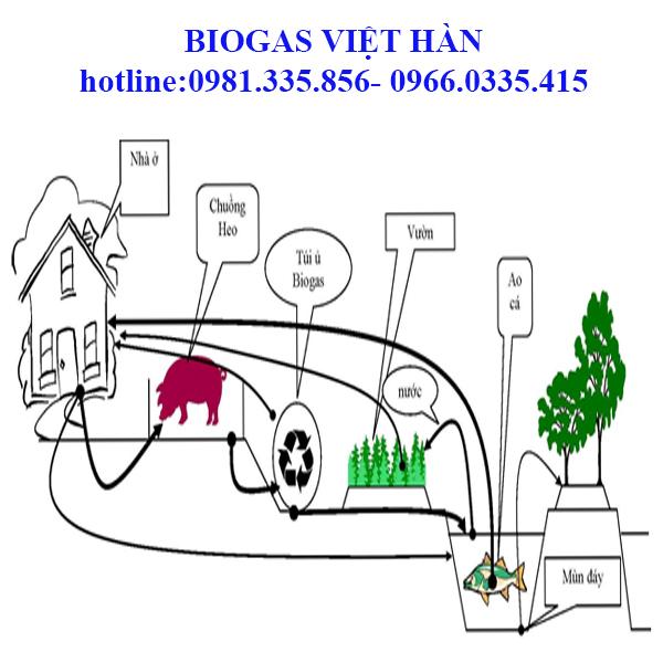 Xử lí chất thải bằng công nghệ biogas?