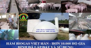 Hệ thống hầm biogas